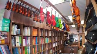 Guitar, violin, ukulele, GuZheng Jun holidays sales