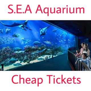 Sea Aquarium Cheap Tickets