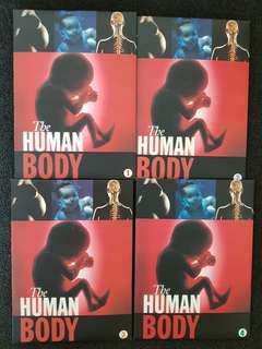 DVD The Human Body (4 dvd)