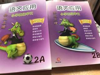 p2 higher Chinese assessment book