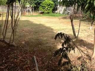 Alabang hills lot for sale