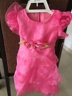 Baby Dress (6-12 months)