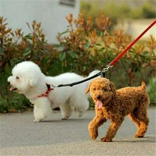 Pet Double Harness