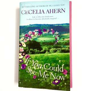 If You Could See Me Now by Cecelia Ahern (family romance book)