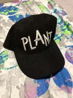 Plant -topi-
