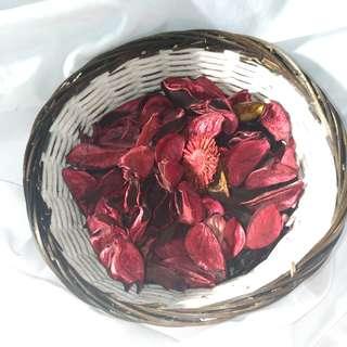 🚚 乾燥花🌸🌸🌸