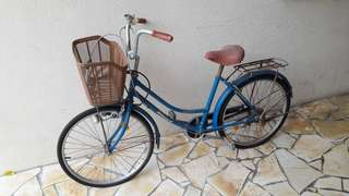 Daily use bicycle for sale
