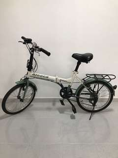 Aleoca foldable bike