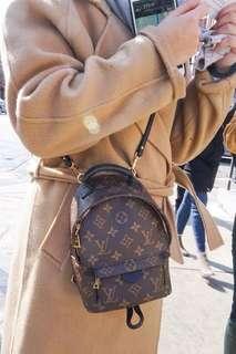 LV Backpack