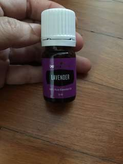 Young Living Essential Oils lavender 5ml