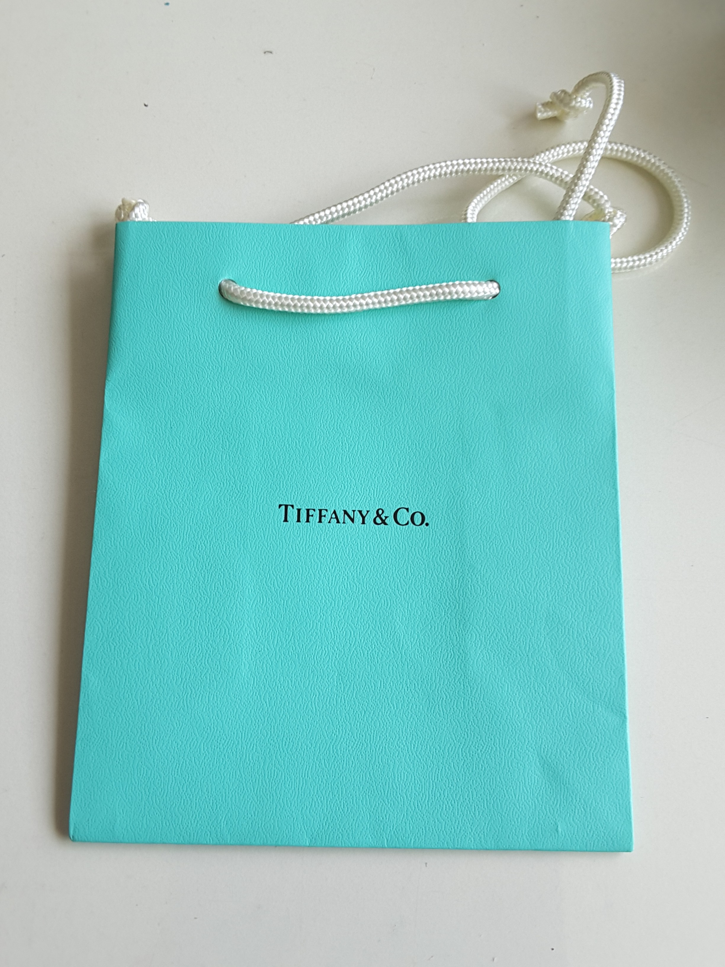 9d271e0978 Tiffany and Co Paper Bag, Luxury, Accessories, Others on Carousell