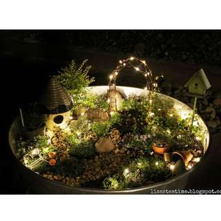 Use fairy light for Terrarium
