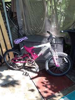 Youth Raleigh bicycle 20""