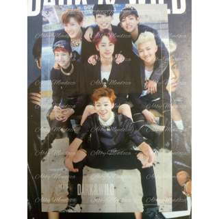 BTS Dark & Wild Group PC