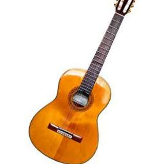 Looking for Guitar