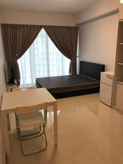 Wonderful and Nice (Almost brand new) studio suite for rental by friendly couple - Woodlands Forestville