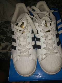 Adidas superstar original  (RUSH)