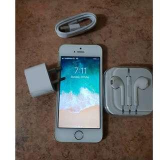 iPhone 5's