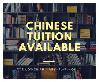 Looking For Chinese Tuition?