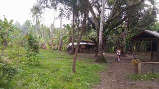 12 Hectares Lot For Sale Along Provincial Road in Magpait, Cabalantian Manticao
