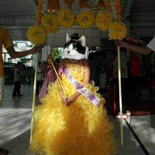 Ball Gown for Kids