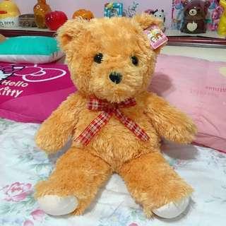 泰迪熊 絨毛娃娃 畢業禮物