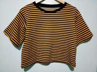 Striped Shirt (Free Shipping)