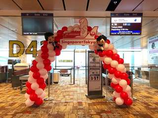 Balloon Arch with Customized Board Mounting!