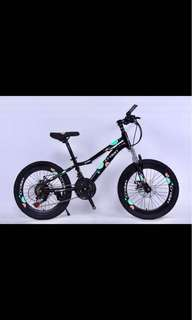 "20"" Crolan Youth Mountain Bike"