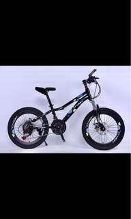 "20"" Crolan Youth Mountain Bike"