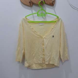 Yellow jaket