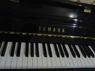 Low rate Private Piano Lesson