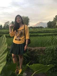 Harimau Kuning Sweater