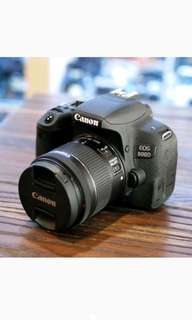 Kredit Canon EOS 800D Kit 18-135mm IS STM Kamera DSLR