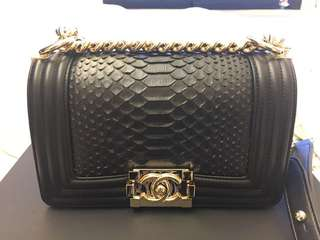 Boy Chanel, snake skin, brand new with box
