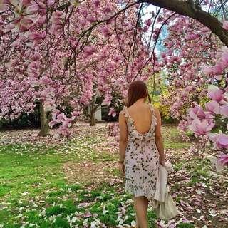 Mango Blush Pink Floral Print Dress
