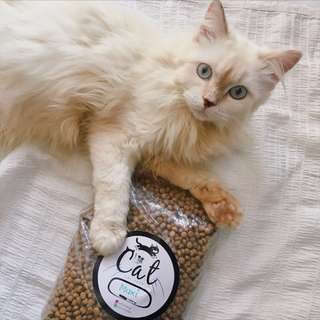Repack Cat Food ( Maxi Chicken & Tuna )