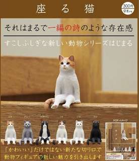 🚚 (預購)KITAN 扭蛋 不可思議動物坐姿貓