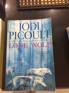 Jodi Picoult Books (1pc)