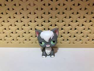 Littlest Pet Shop/LPS Angora Cat