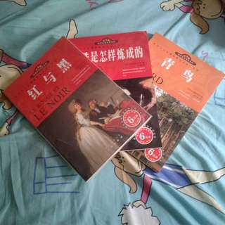 Chinese Translation Literature Book Pack
