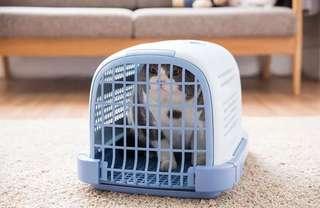 🚚 貓咪也瘋狂!寵物外出籠貓狗通用