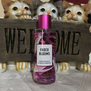 VS Faded blossoms