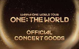 Wanna One Official Concert Goods