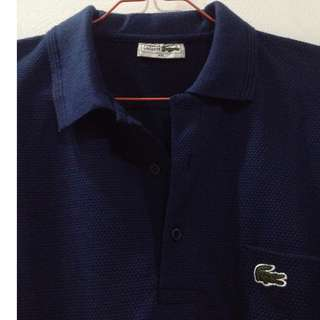ORIGINAL Lacoste Polo Shirt Navy Blue (Classic)