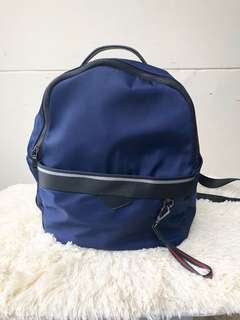 Longchamp inspired free pouch