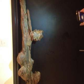 Never before - Very old rare natural Agarwood