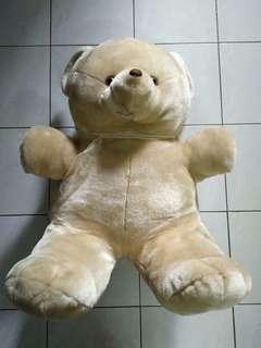 XL bear toy