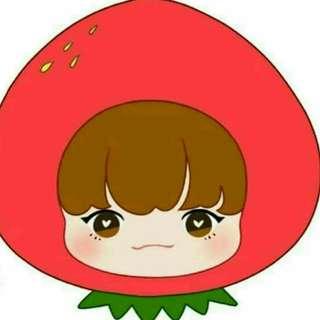 BTS公仔 草莓泰零錢包 金泰亨玩偶  BTS周邊