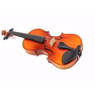 Best Buy!!! Beginners Violin for new learners at only $80